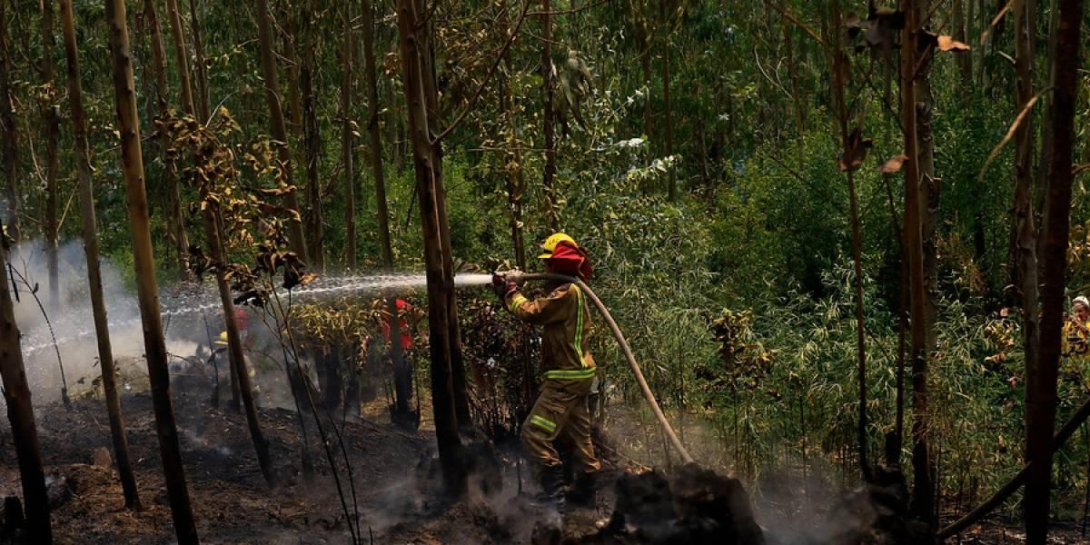 Las campañas y donaciones que nacieron del fútbol chileno para los damnificados del incendio