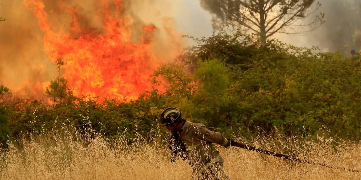 Incendios forestales: 65 personas han sido formalizadas por presunta responsabilidad en siniestros