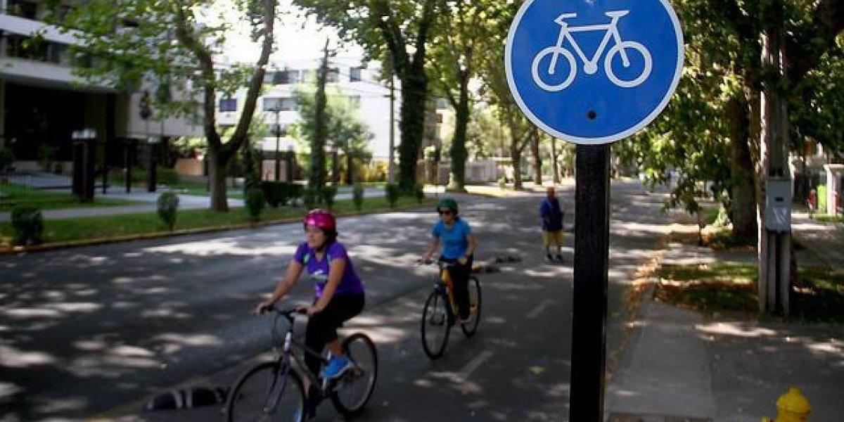 Las alentadoras cifras sobre la presencia de bicicletas en Santiago
