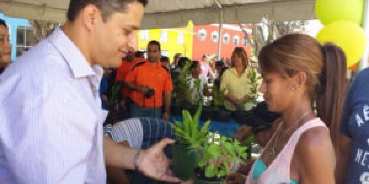Estudiantes de Arecibo participarán de proyecto de reforestación para sembrar más de mil árboles