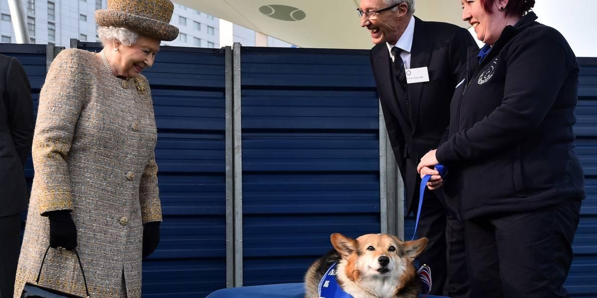 Isabel II está de luto por la muerte de su perrito Willow