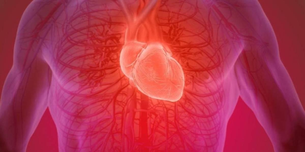 Es posible recuperar un corazón humano después de muerto? | Metro