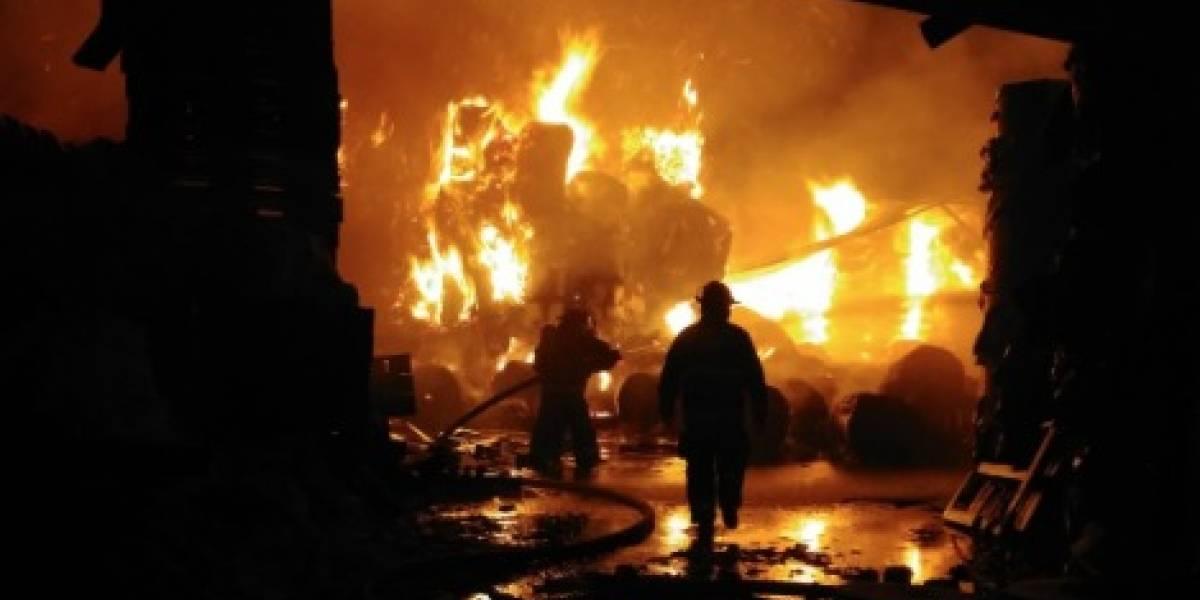 Incendio consume una papelera en la comuna de Puente Alto