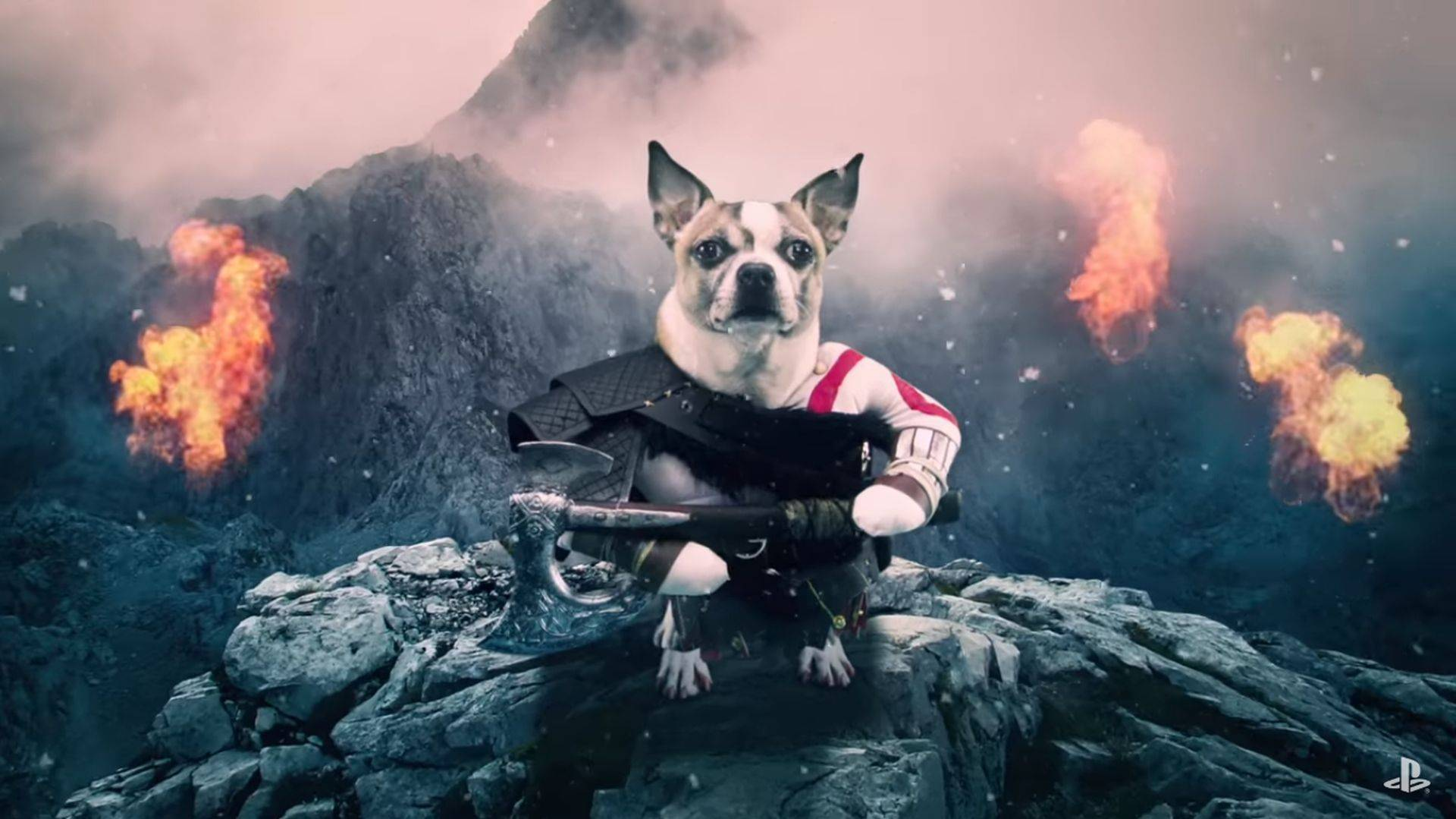 Dog of War: Vean este divertido comercial de God of War con perros
