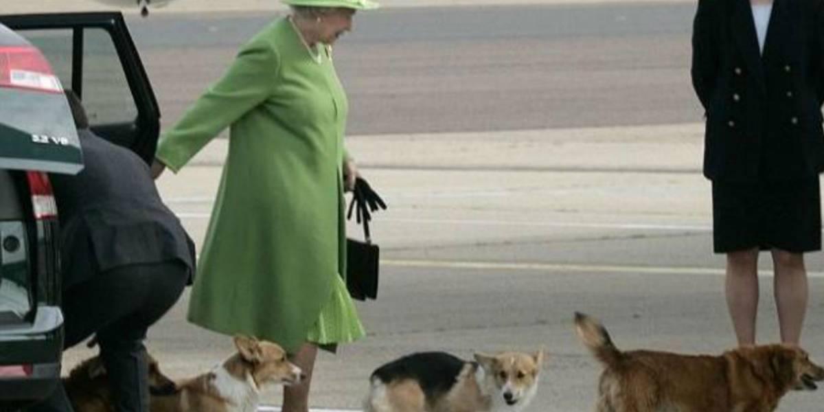 Reina Isabel II está triste por la muerte de su perro de raza corgi