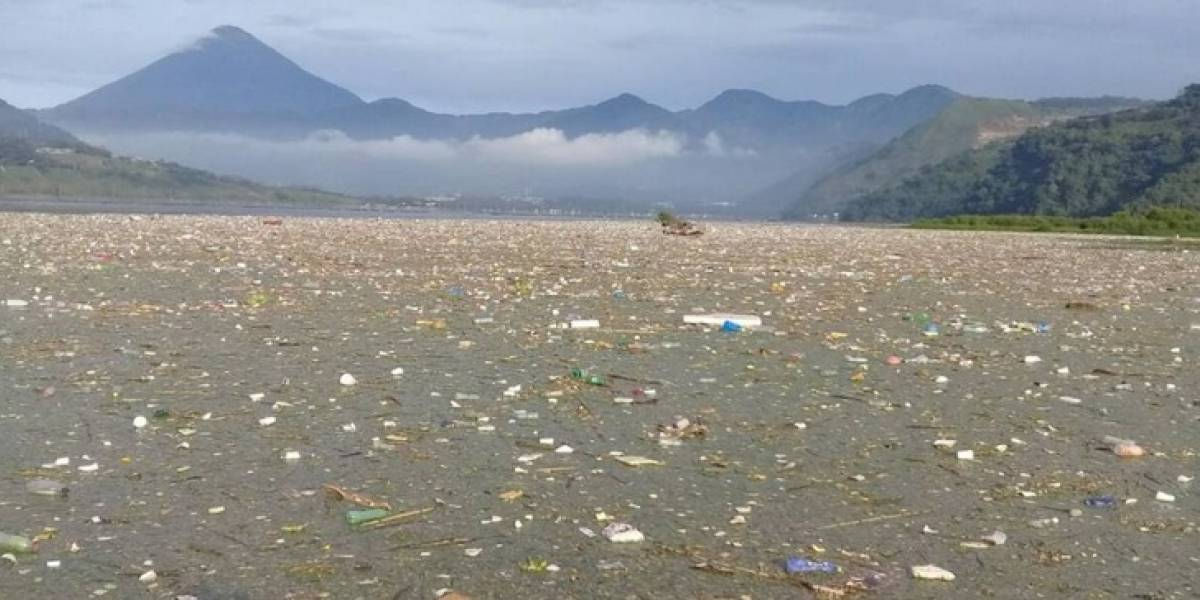 Procuraduría de los DD. HH. insta a no usar botellas, bolsas de plástico y pajillas por el día de la Madre Tierra