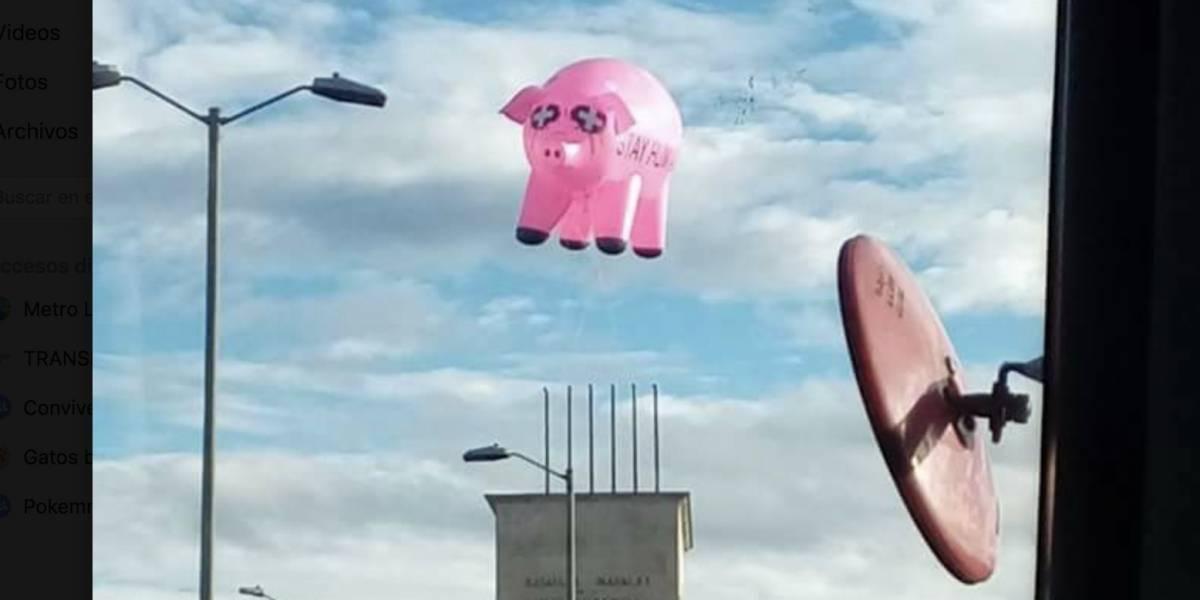 La verdad tras el cerdo volador en Bogotá