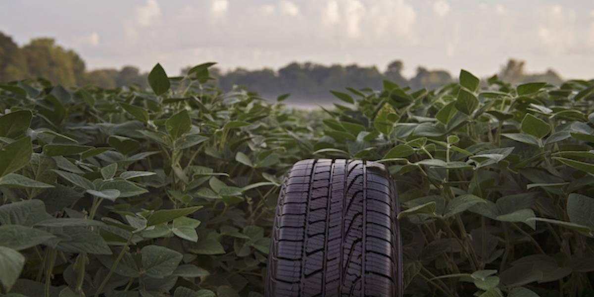 Por el Día de la Tierra, Goodyear destaca sus ecológicos procesos y productos