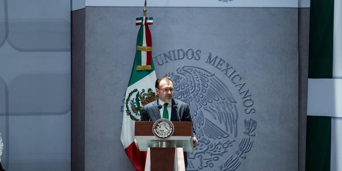 ONG's piden a Luis Videgaray representar intereses de México ante la OEA