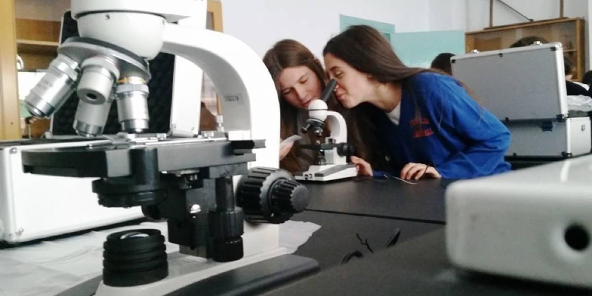 Científicos chilenos quieren que las Ciencias Naturales sean obligatorias hasta concluir la enseñanza media