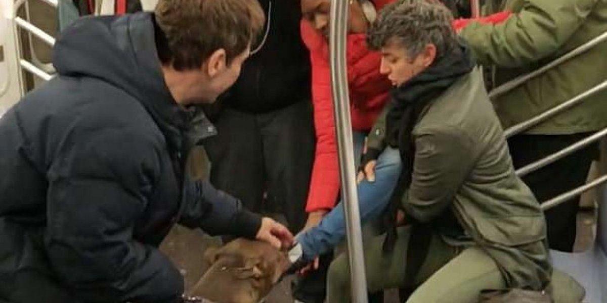 Impactante registro: graban el terrorífico momento en que pitbull ataca a pasajera en el Metro de Nueva York