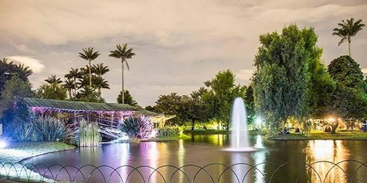 Prográmese para entrar gratis de noche al Jardín Botánico