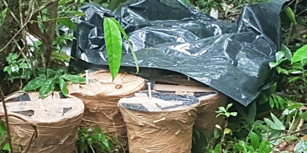 Fuerzas Armadas localizan y destruyen explosivos en la frontera norte