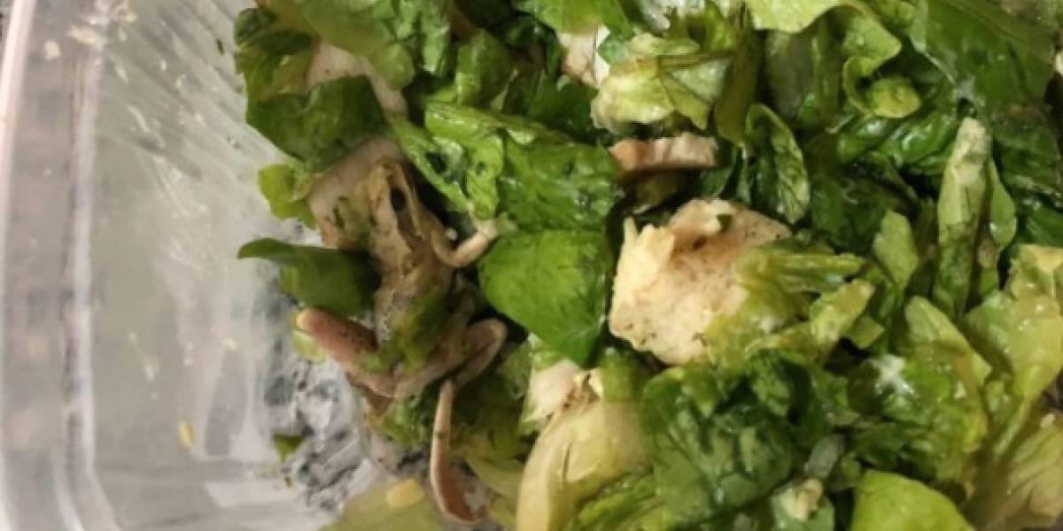 """No les quedó pollo y mandaron rana: el asqueroso """"ingrediente"""" que encontró una joven en su ensalada de lechugas"""