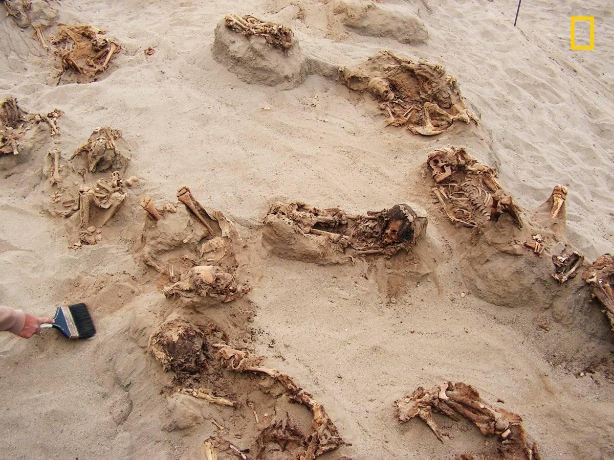En esta foto del 22 de abril de 2011 que fue proporcionada por National Geographic se muestra más de una docena de cuerpos preservados en arena por más de 500 años en Huanchaquito-Las Llamas, cerca de Trujillo, Perú.