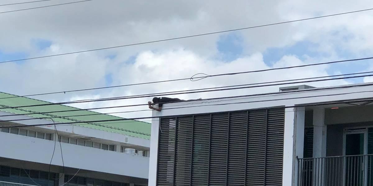 Cuestionan instalación de cámaras en el DE dos días antes de paro nacional