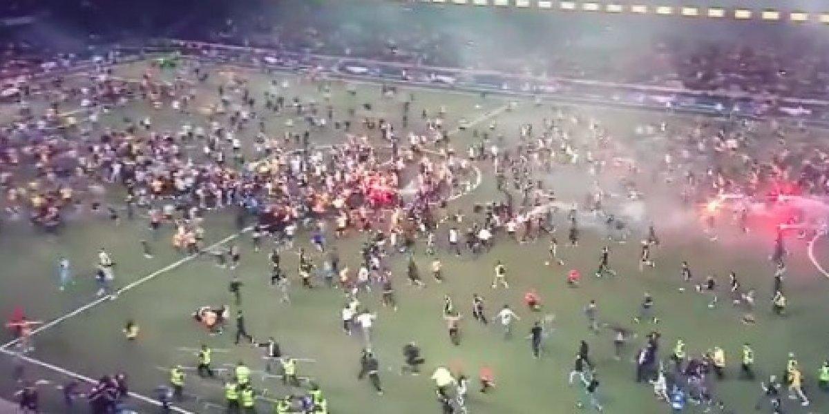 VIDEO: Afición de Young Boys enloquece al ganar Liga Suiza tras 32 años de sequía