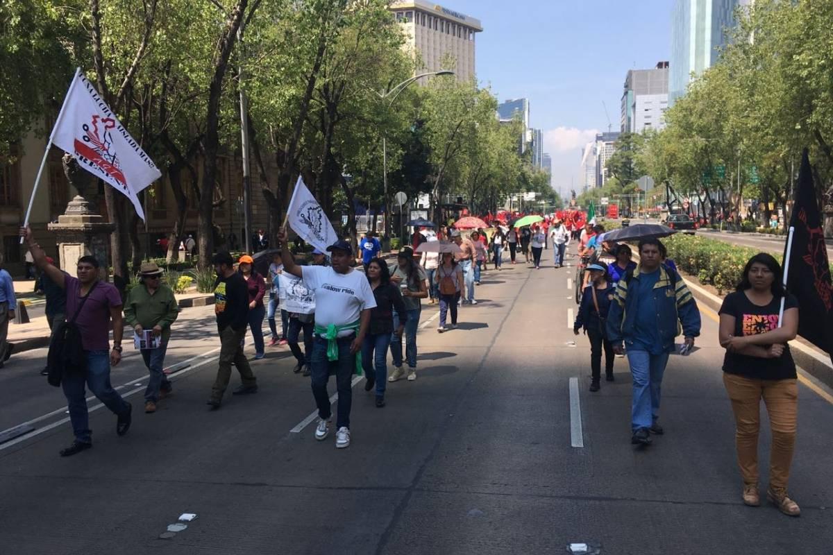 Foto: Nicolás Corte.