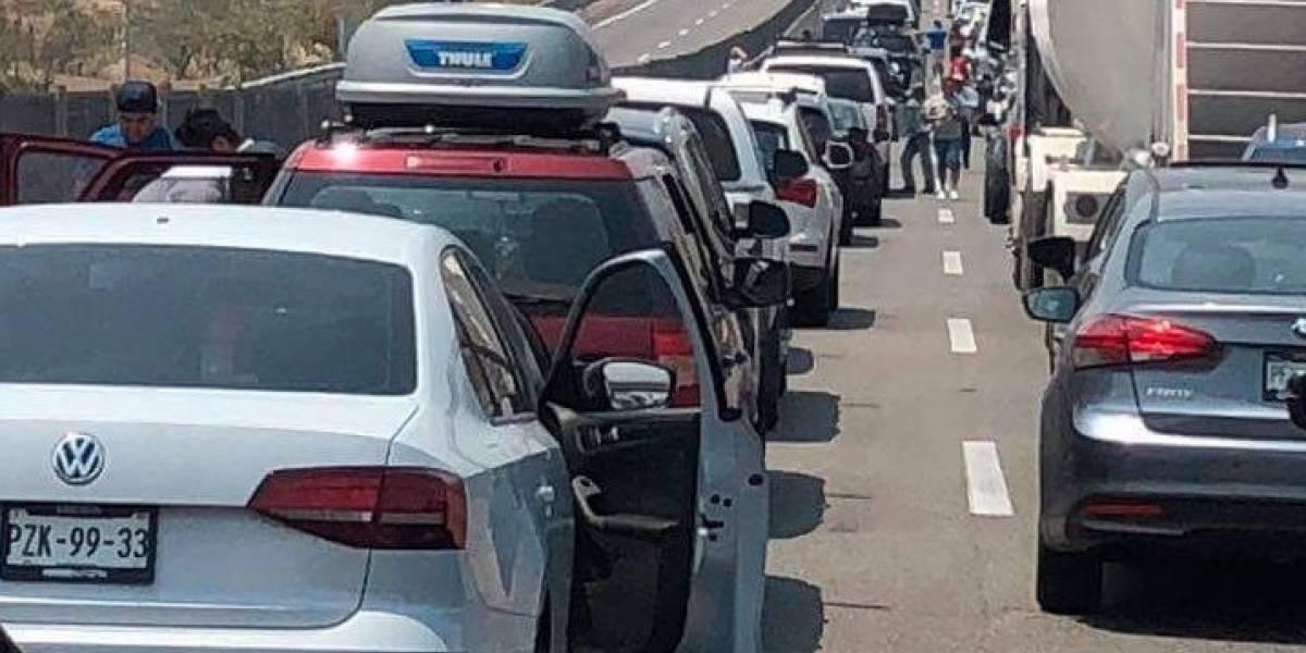 Profeco recibe nueve denuncias por mal servicio en Acapulco