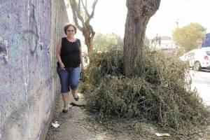 Suzete tenta caminhar por entre galhos deixados nas calçadas de seu bairro