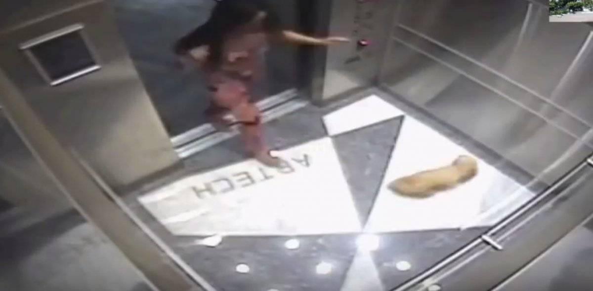 Keevonna video maltrato perro