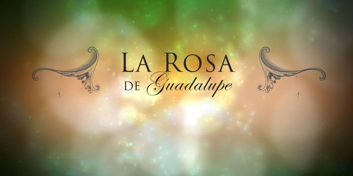 La Rosa de Guadalupe está entre los programas más vistos por los jóvenes en México
