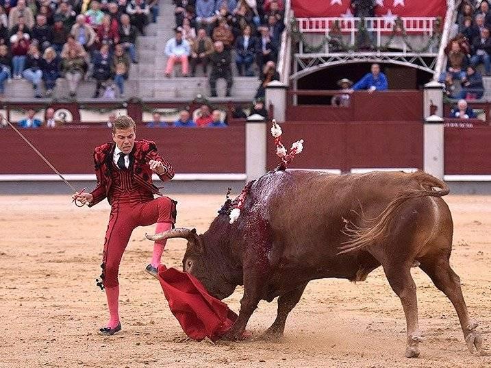 Mundo Toro