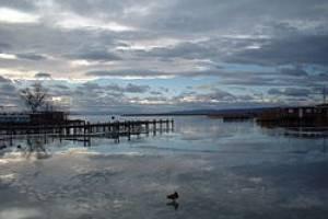 lago Neusiedl