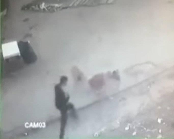 Captura Hombre ahuyenta a perros con patadas y puñetazos