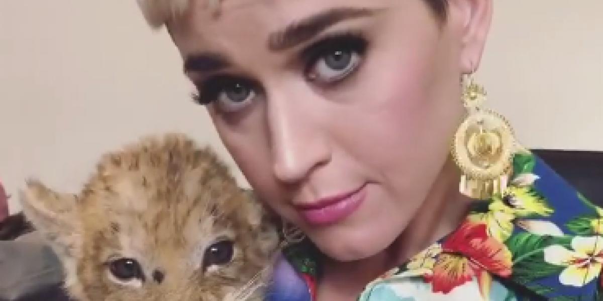 Concierto en Imágenes: Katy Perry
