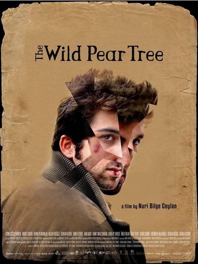 The Wild Pear Tree, de Nuri Bilge Ceylan