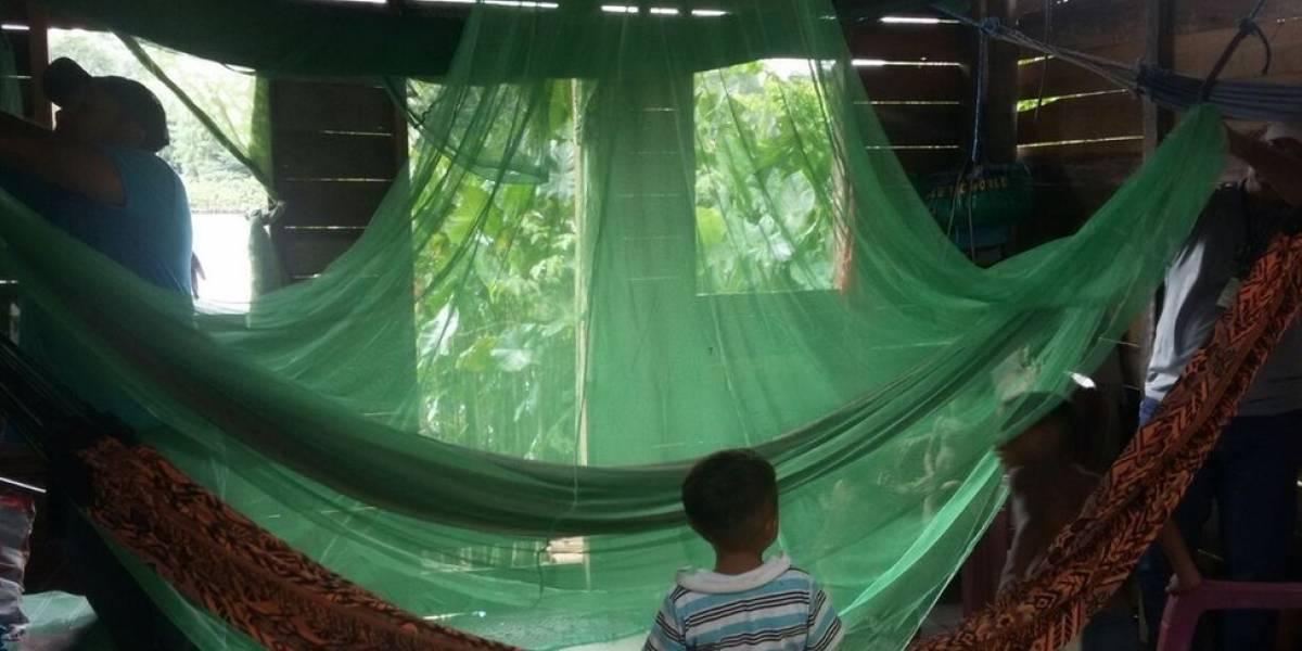 Por que os casos de malária cresceram 50% no Brasil após 6 anos de queda