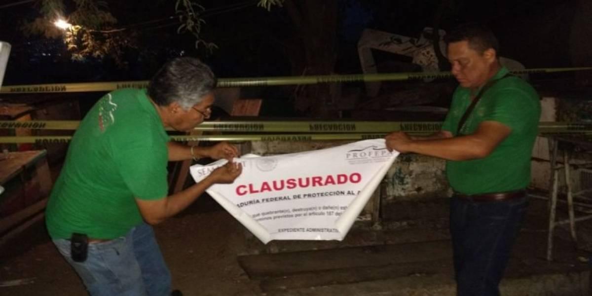 """Profepa clausura """"El Astillero"""" en Acapulco por contaminación"""