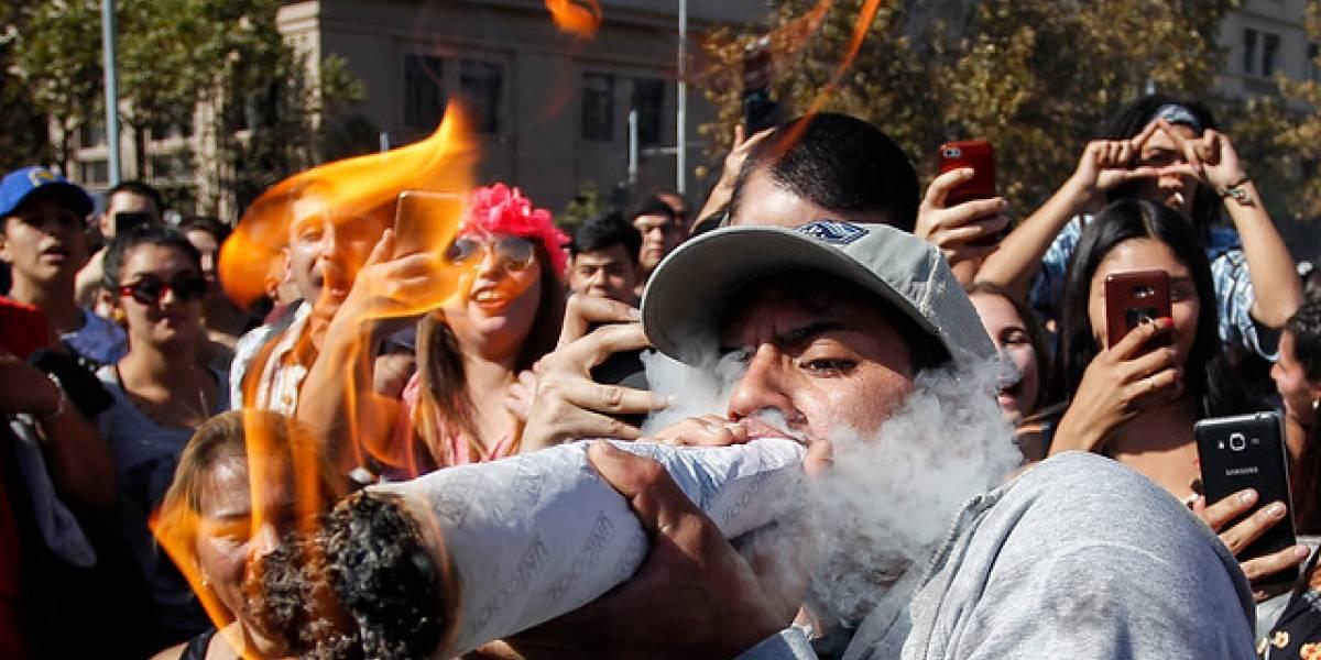 """Con más de 10 mil adherentes: marcha """"Cultiva tus derechos"""" se tomó las calles de Santiago"""