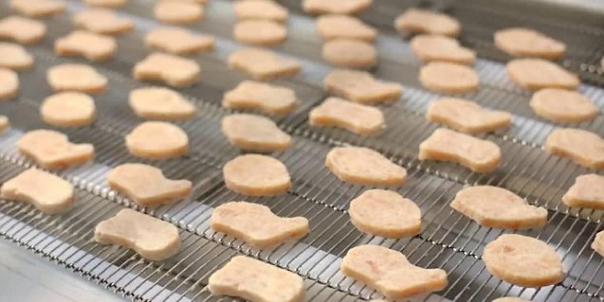 Organización Xprize está dispuesta a financiar con un presupuesto millonario a quienes desarrollen carnes de laboratorio