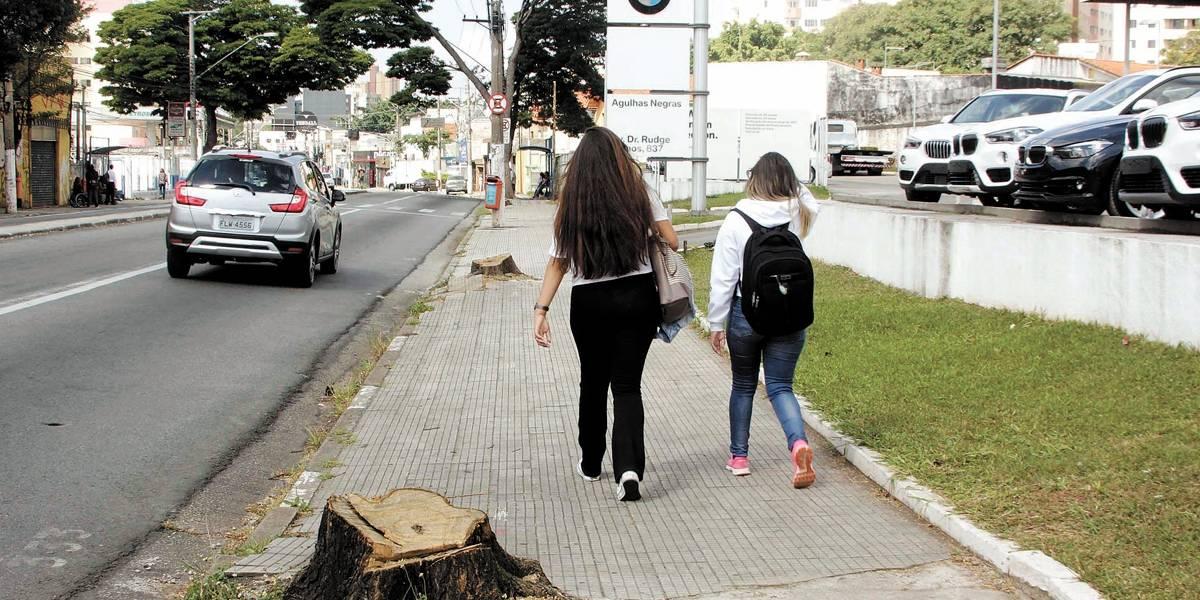 São Bernardo do Campo reduz compensação ambiental por corte de árvores