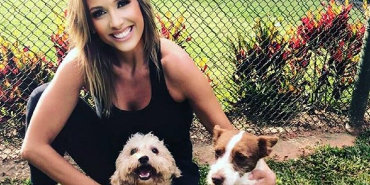 Luisa Mell resgata mais de 50 cães e gatos em casa na zona sul de SP
