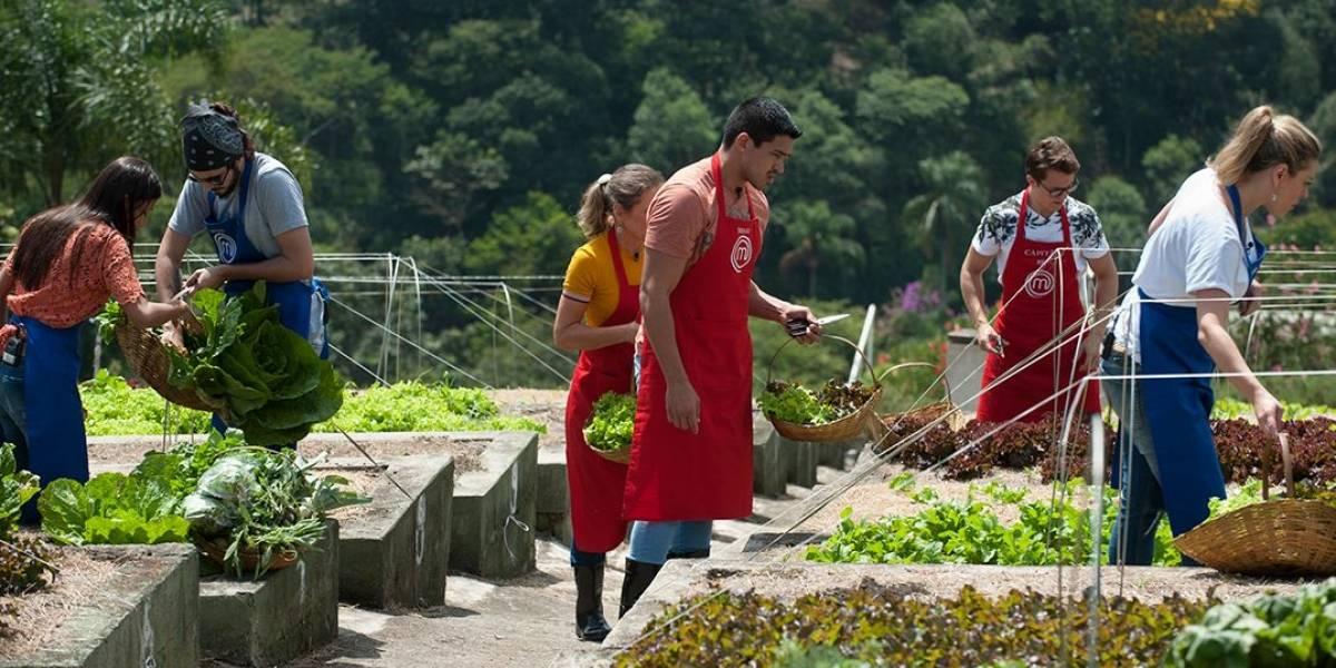 MasterChef: cozinheiros encaram prova em equipe com ingredientes orgânicos