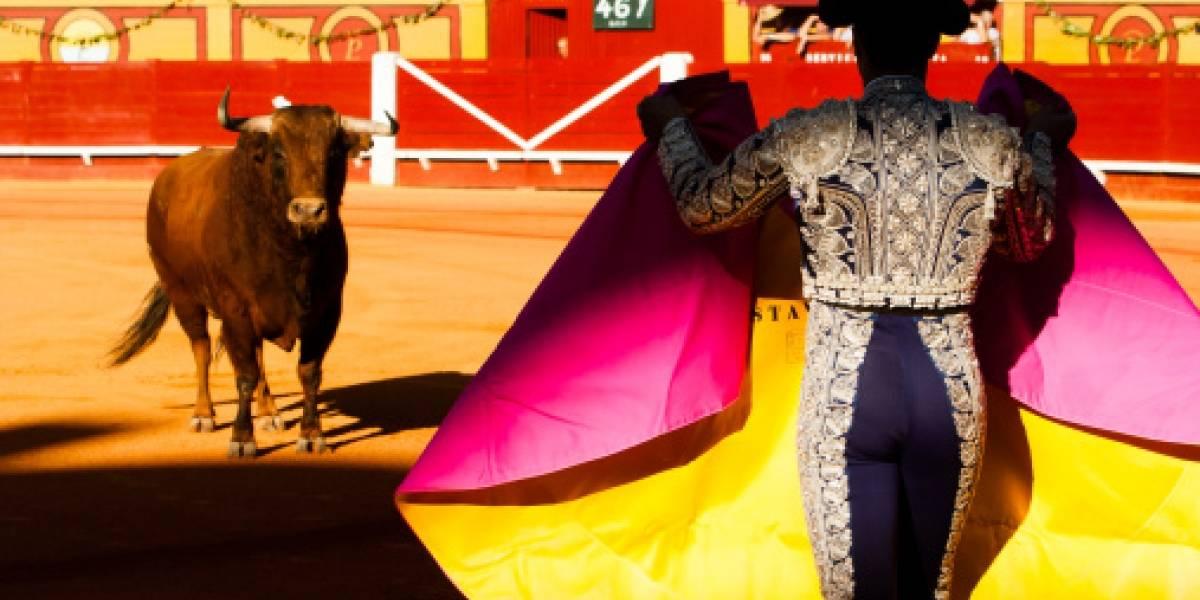 Quito: este viernes se sabrá si se suprimen las corridas de toros
