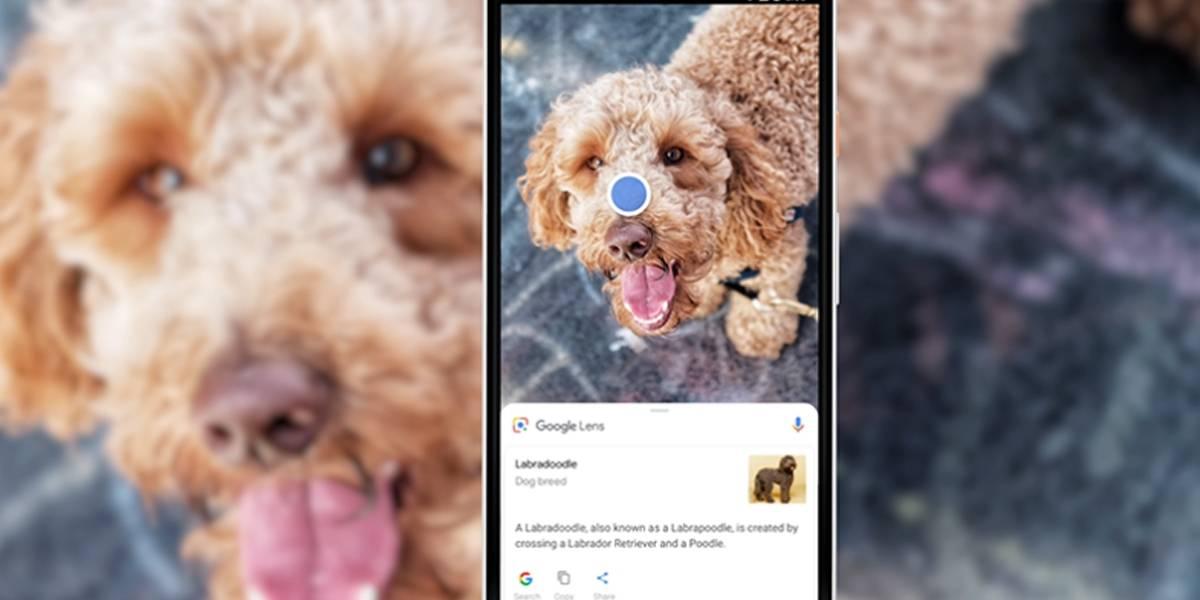 Saiba quando e em quais celulares o Google Lens estará disponível em português