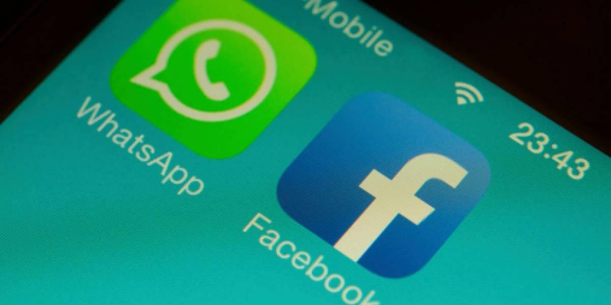 Así puedes ver vídeos de Facebook e Instagram en WhatsApp
