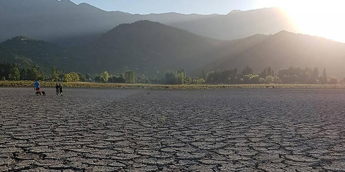 El ambicioso plan de la Universidad de Chile para recuperar el agua de la laguna de Aculeo