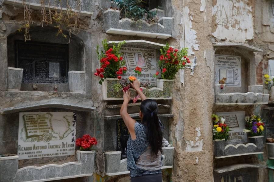 Coloridos Arreglos Florales Se Mezclan Con La Nostalgia Al