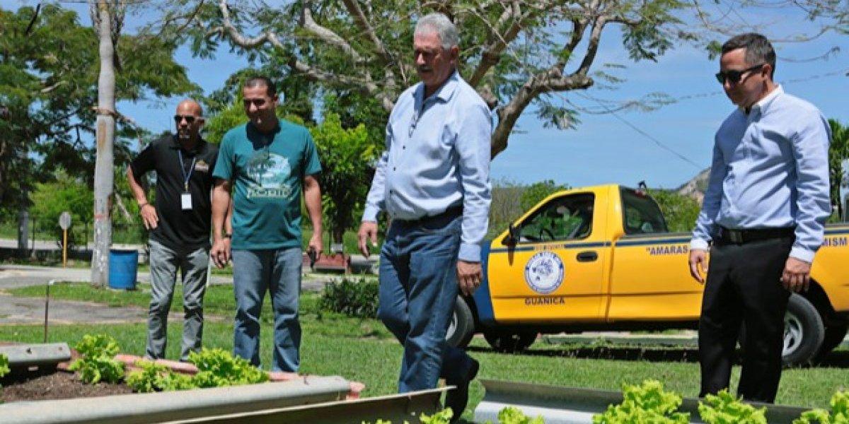 Participantes de Hogar Crea ayudan a restablecer la agricultura