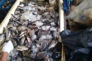 contaminacionlagunamangales2-f5af8894e410970ea4bc0a70bc8723ea.jpg