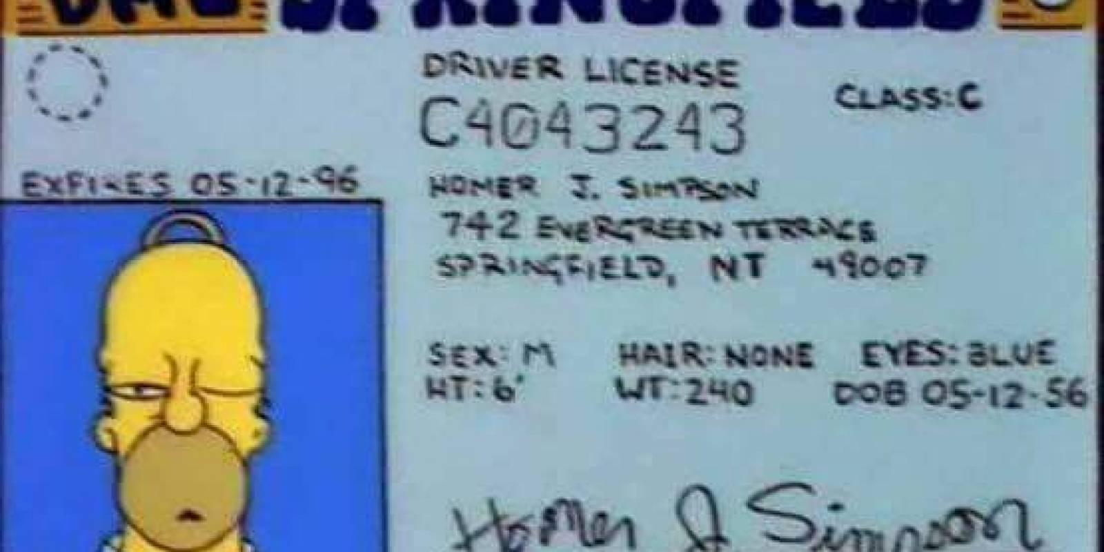 La licencia de Homero