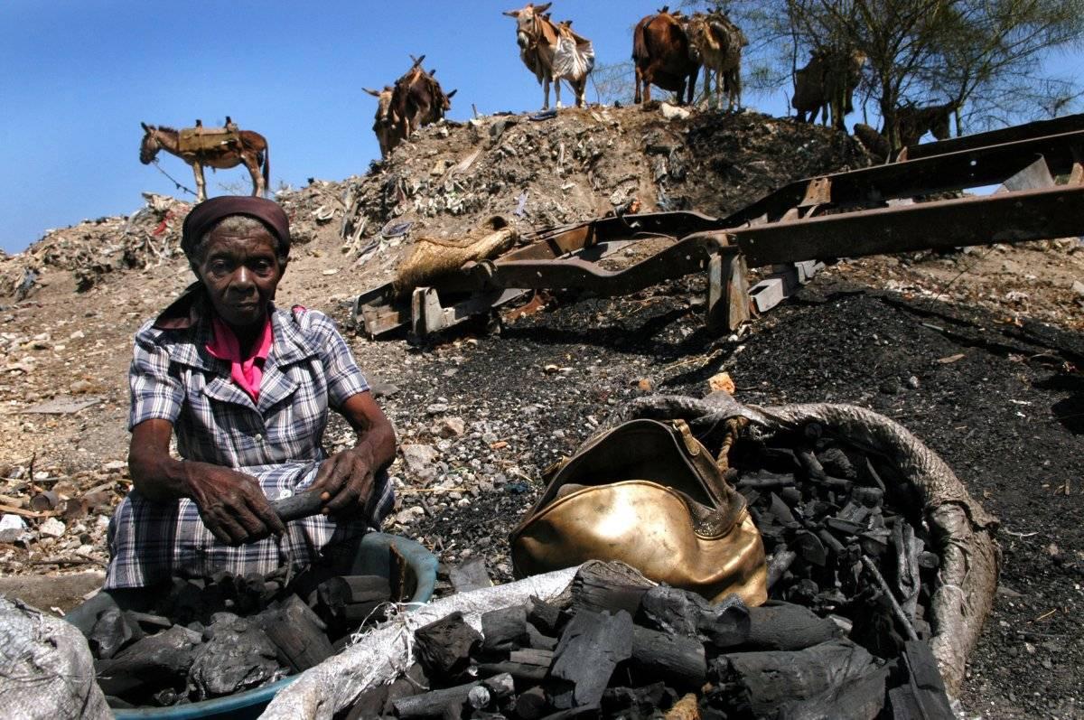 Unos burros esperan para llevarse el carbón en el mercado local el 17 de marzo de 2005 en Miragoane, Haití. |getty