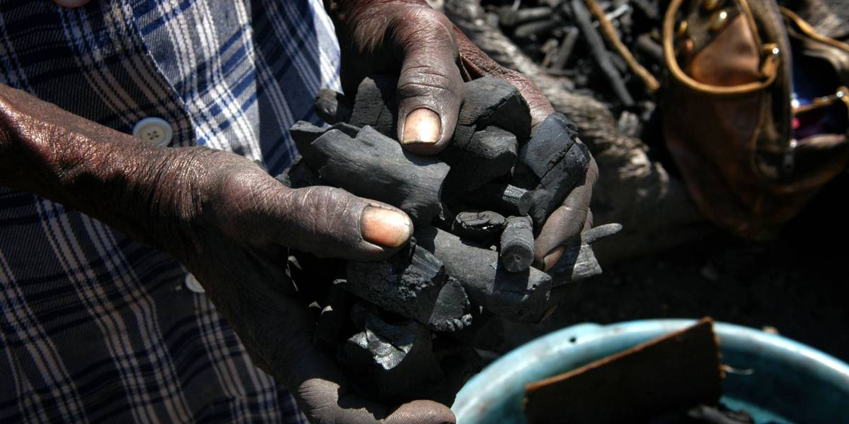 Carbón de leña, negocio millonario en Haití, acelera el cambio climático