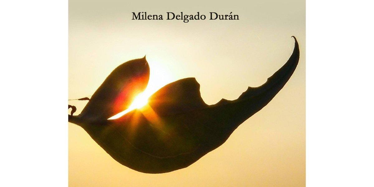 """Milena Delgado presenta segunda edición de su libro """"Belleza oculta"""""""