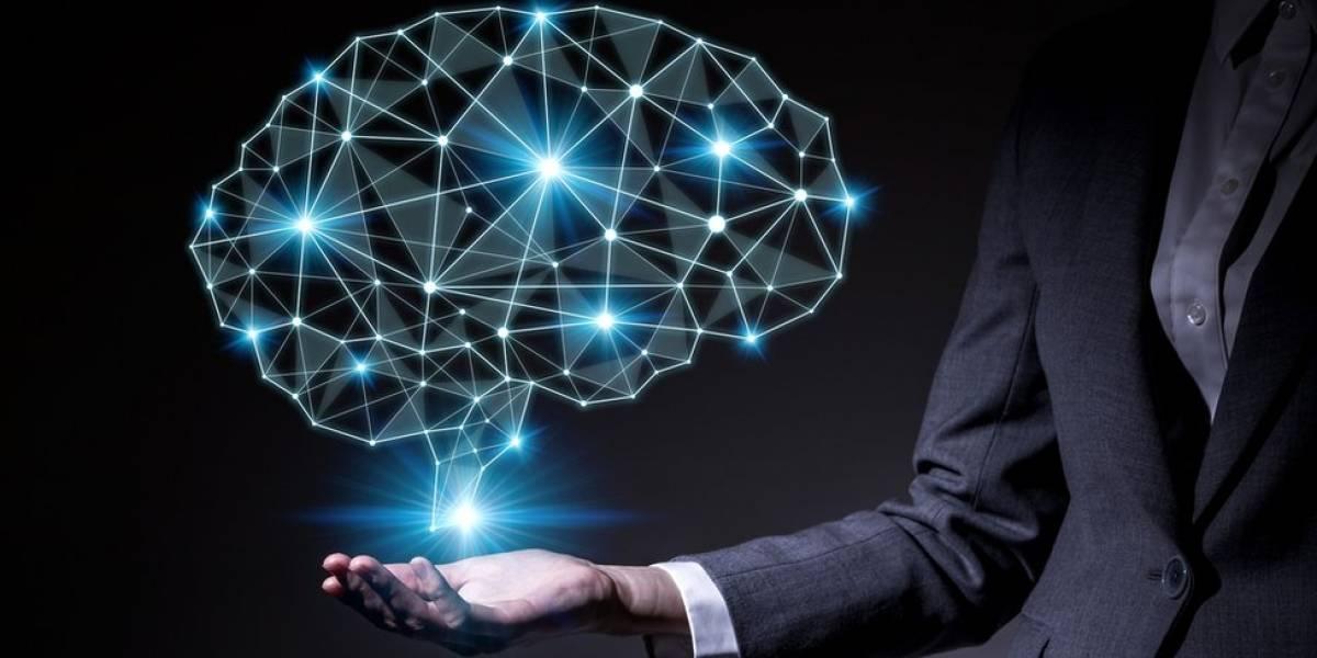 Científicos consiguen 'transferir' memoria entre dos caracoles